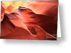 Desert Flames Greeting Card