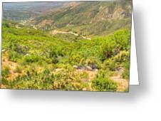 Desert Gulley Greeting Card