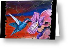 Desert Hummingbird Greeting Card