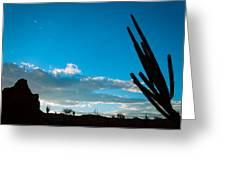 Desert Landscape Silhouette Greeting Card