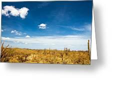 Desert Landscape With Deep Blue Sky Greeting Card