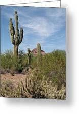 Desert Landscape With Saguaro Greeting Card