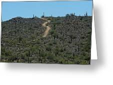 Desert Love Greeting Card