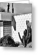 Desert Modern Bw Palm Springs Greeting Card