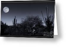 Desert Moon Greeting Card
