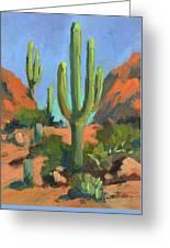 Desert Morning Saguaro Greeting Card