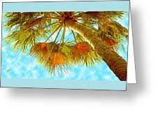 Desert Palm Greeting Card