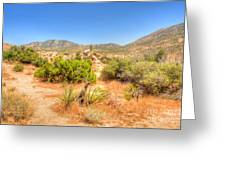 Desert Panorama Greeting Card