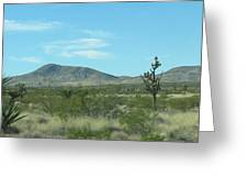 Desert Panoramic Greeting Card
