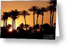 Desert Silhouette Sunrise Greeting Card