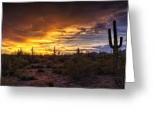 Desert Skies  Greeting Card