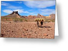 Desert Sky Greeting Card