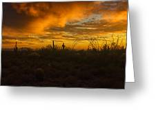 Desert Southwest Skies  Greeting Card