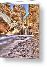 Desert Spring Runoff. Greeting Card