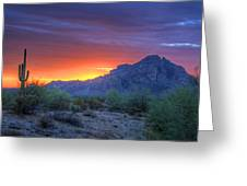Desert Sunset Greeting Card