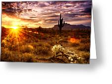 Desert Sunshine  Greeting Card