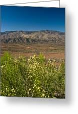 Desert Valley Scene 7 Greeting Card