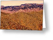 Desert View In Arizona By The Colorado River Greeting Card