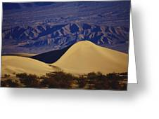 Desert Wave Greeting Card