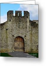 Desmond Castle Doors Greeting Card