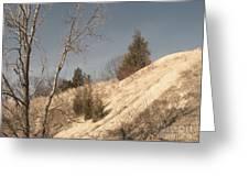 Desolate For A Season Greeting Card