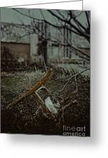 Destruction Greeting Card by Margie Hurwich