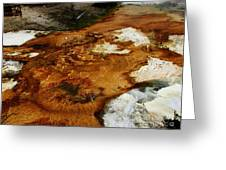 Detail Mammoth Springs Yellowstone Greeting Card