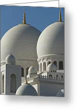 Detail Of The Domed Roof Of The Sheikh Greeting Card