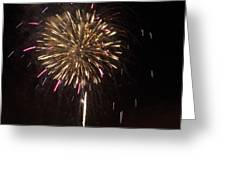 Detroit Area Fireworks -8 Greeting Card