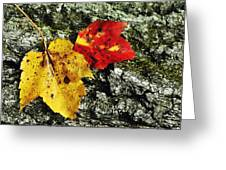 Deux Feuilles Greeting Card by JAMART Photography