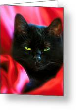 Devil In A Red Dress Greeting Card