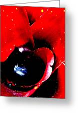 Devilish Eye Of The Bromeliad Greeting Card