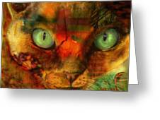 Devon Rex - Lit From Within Greeting Card