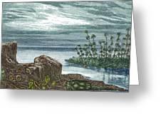 Devonian Period Greeting Card