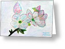 Dew And Smell Of Almond Flowers Greeting Card
