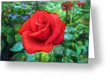 Dew Soaked Rose Greeting Card