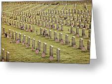 Dfw National Cemetery II Greeting Card