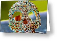 Dia De Los Muertos Skull Greeting Card