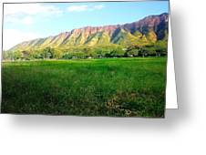 Diamond Head Seeing At The Park  Greeting Card