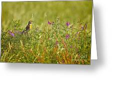 Dickcissel And Flowers Greeting Card