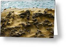 Differential Erosion Greeting Card