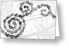 Digital Art Abstract Pebbles And Trees - Black And White Greeting Card by Natalie Kinnear