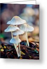 Digital Art Mushrooms Greeting Card by Tammy Smith