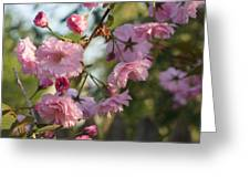 Digital Spring Greeting Card