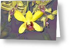 Digitised Orchids Greeting Card