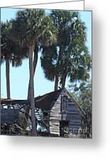 Dilapidated Old Barn - 3 Greeting Card
