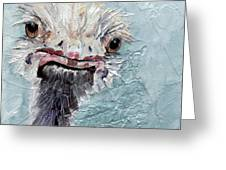 Dimples - An Ostrich Greeting Card