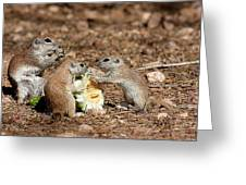 Dinner For Three Greeting Card