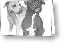 Dippy And Muggs Greeting Card