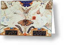 Diptych With Flowers And Insects Greeting Card